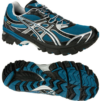 Asics Gel Moriko 5 GTX Shoes