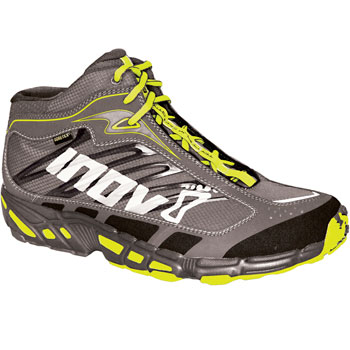 Inov 8 Terrafly 343 GTX Shoes AW11